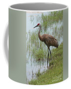 Sandhill In The Marsh Coffee Mug