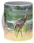 Sandhill In The Sunshine Coffee Mug