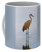 Sandhill Standing In Peaceful Pond Coffee Mug