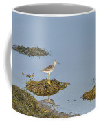Sandpiper On Stilts Coffee Mug