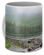 Sandy Stream Pond Coffee Mug