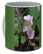 Sanford Spring Coffee Mug