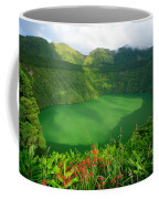 Santiago Lake Coffee Mug