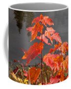 Sapling By The Pond Coffee Mug