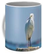 Sarasota Snow Coffee Mug
