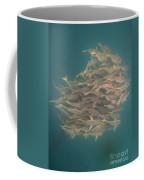 Sargo Coffee Mug