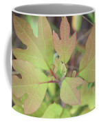 Sassafras Coffee Mug