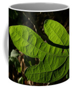 Sassafras Coffee Mug
