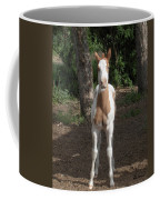 Sassy Filly Coffee Mug