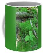 Sassy Sapling Coffee Mug