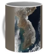 Satellite View Of Snowfall Along South Coffee Mug