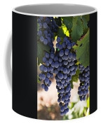 Sauvignon Grapes Coffee Mug by Garry Gay