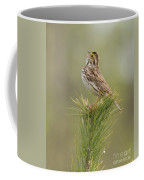 Savannah Sparrow Coffee Mug