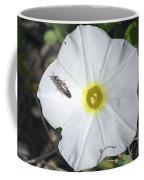 Sawfly On A Beach Morning Glory Flower Coffee Mug