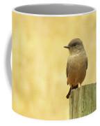 Say's Pheobe  Coffee Mug