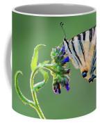 Scarce Swallowtail Coffee Mug