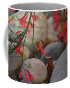 Scarlet Bugler Blossoms On Rocks Coffee Mug