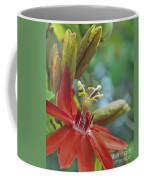 Scarlet Flame Passiflora  Coffee Mug