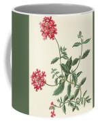 Scarlet Flowered Vervain Coffee Mug