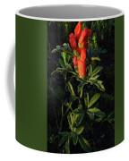 Scarlet Globemallow Coffee Mug