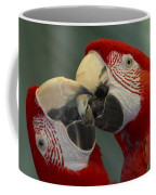 Scarlet Macaw Ara Macao Pair Kissing Coffee Mug