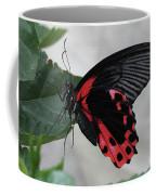 Scarlet Mormon Butterfly #2 Coffee Mug
