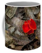 Scarlet Underfoot Coffee Mug