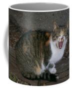 Scary Kitty Coffee Mug