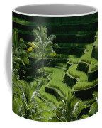 Scenic Valleys With Rice Fields In Bali Coffee Mug