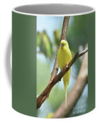Scenic View Of An Adorable Yellow Parakeet Coffee Mug