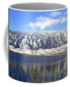 Scenic Wood Lake Coffee Mug