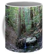 Scents And Subtle Sounds On Mount Tamalpais Coffee Mug