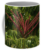 Schefflera Flower Coffee Mug