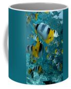 School Of Butterflyfish Coffee Mug