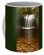Schoolhouse Falls - Nc Coffee Mug