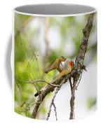 Scissortail Ballet Coffee Mug