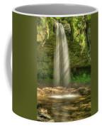 Scott Falls 4741 Coffee Mug