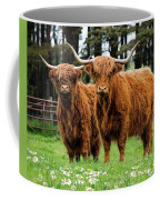 Scottish Highland Cows Coffee Mug