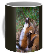 Scratchin With Distraction Coffee Mug