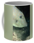 Scrawled Filefish Profile, Alutera Coffee Mug