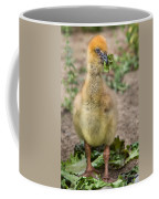 Screamer Chicking Eating His Spinach Coffee Mug