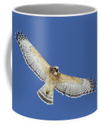 Screaming Hawk Coffee Mug