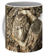 Screech Owl In Cavity Nest Coffee Mug