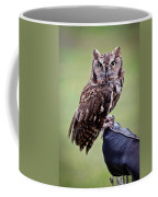 Screech Owl Perched Coffee Mug by Athena Mckinzie