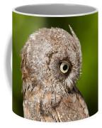Screech Owl Portrait Coffee Mug