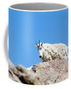 Scruffy Mountain Goat On The Mount Massive Summit Coffee Mug