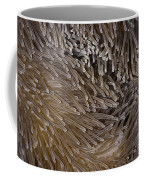 Sea Anemone Closeup Coffee Mug
