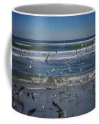 Sea Birds Feeding On Florida Coast Dsc00473_16 Coffee Mug