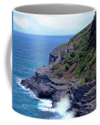 Sea Cave And Nesting Boobies Coffee Mug