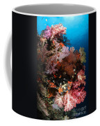 Sea Fans And Soft Coral, Fiji Coffee Mug